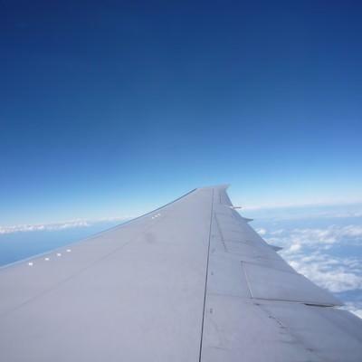 飛行機の羽と広がる青空の写真