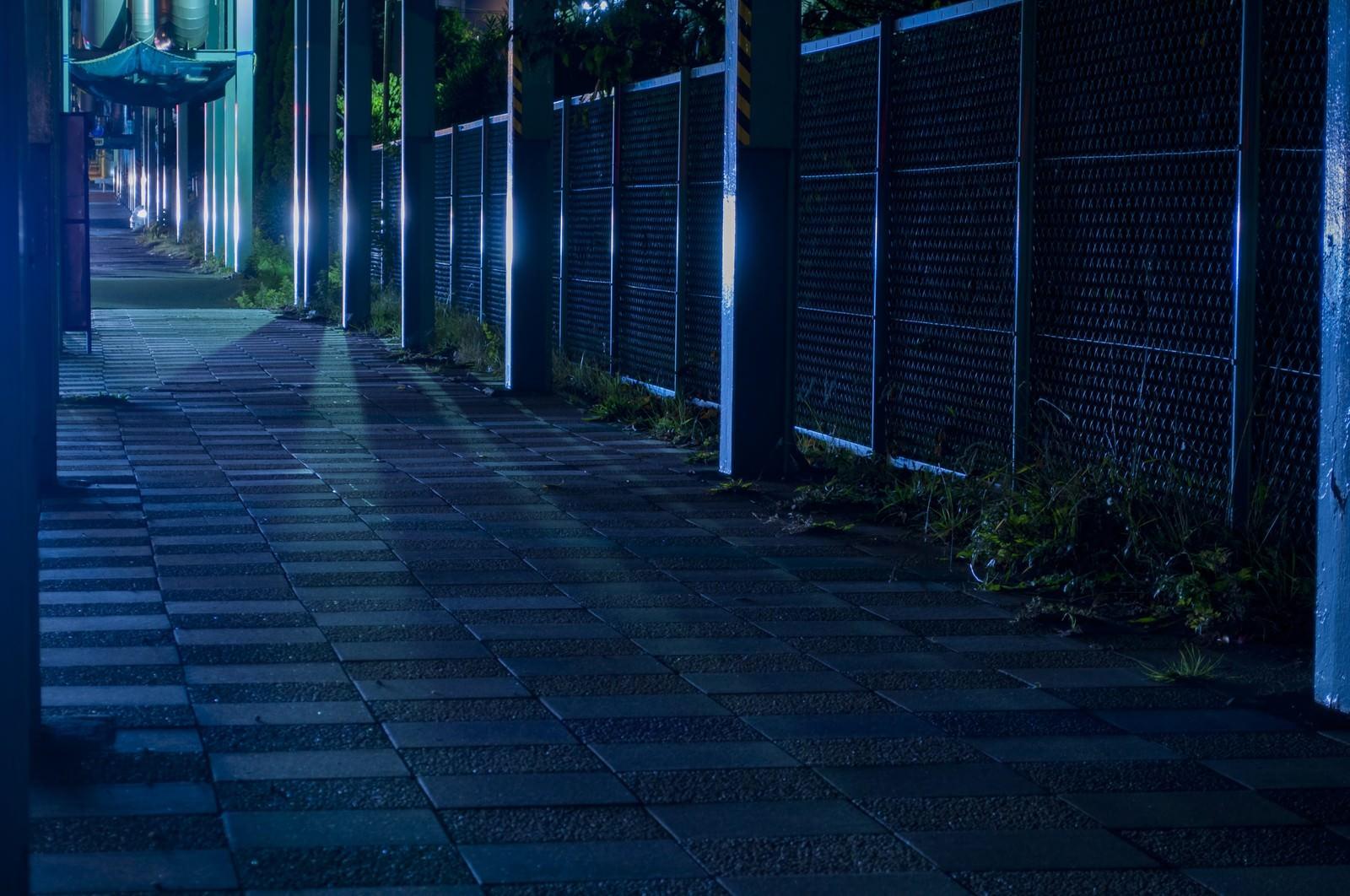 「光の差す無機質な夜道光の差す無機質な夜道」のフリー写真素材を拡大