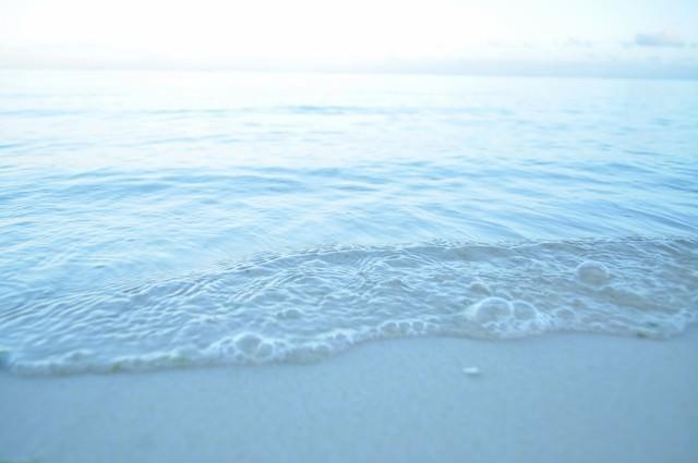 朝の波打ち際の写真