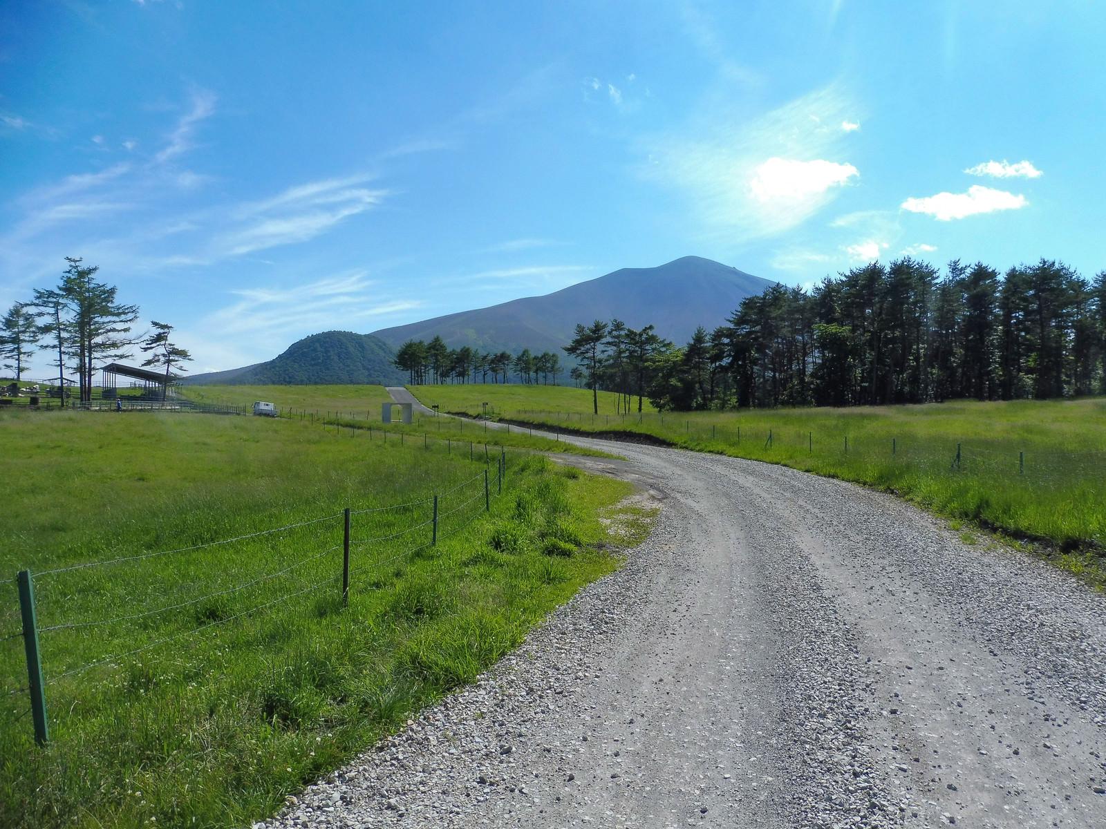 「浅間牧場の遊歩道浅間牧場の遊歩道」のフリー写真素材を拡大