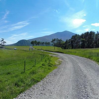 浅間牧場の遊歩道の写真