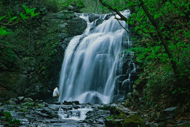 「浅間大滝と釣り人」のフリー写真素材