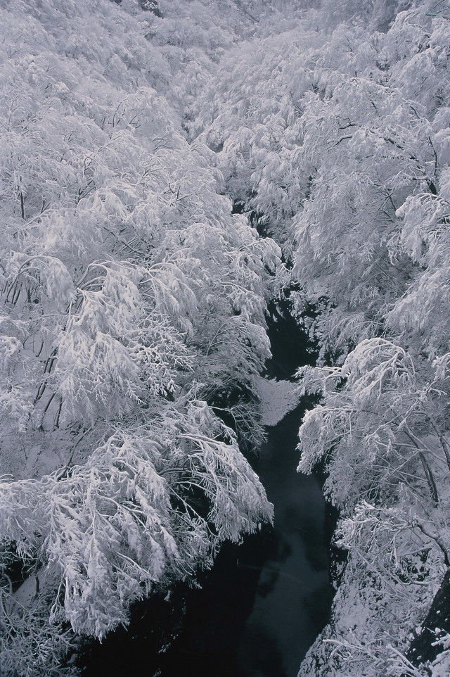 「浅間渓谷の雪模様」のフリー写真素材