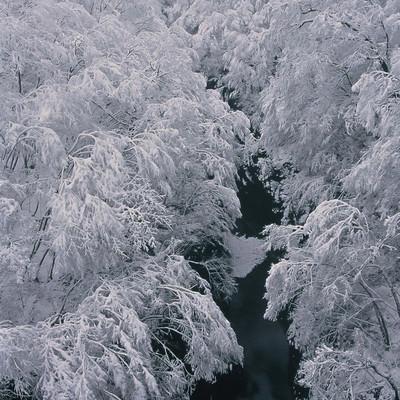 浅間渓谷の雪模様の写真