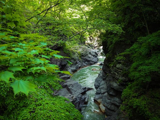 「新緑の吾妻峡(吾妻川)」のフリー写真素材