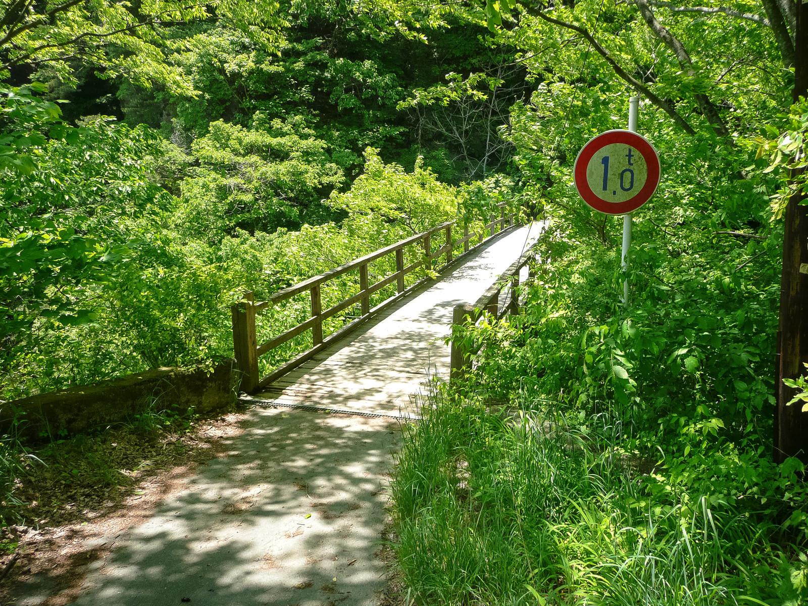 「吾妻川にかかる琴橋(長野原町)」の写真
