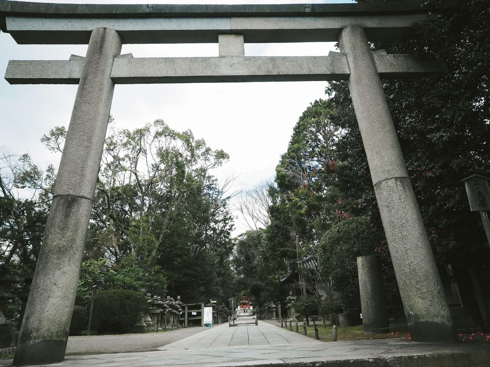 「石清水八幡宮の三ノ鳥居と参道」の写真