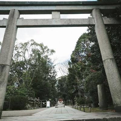 石清水八幡宮の三ノ鳥居と参道の写真