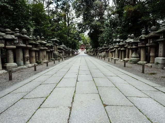 石清水八幡宮の表参道に並ぶ灯篭の写真