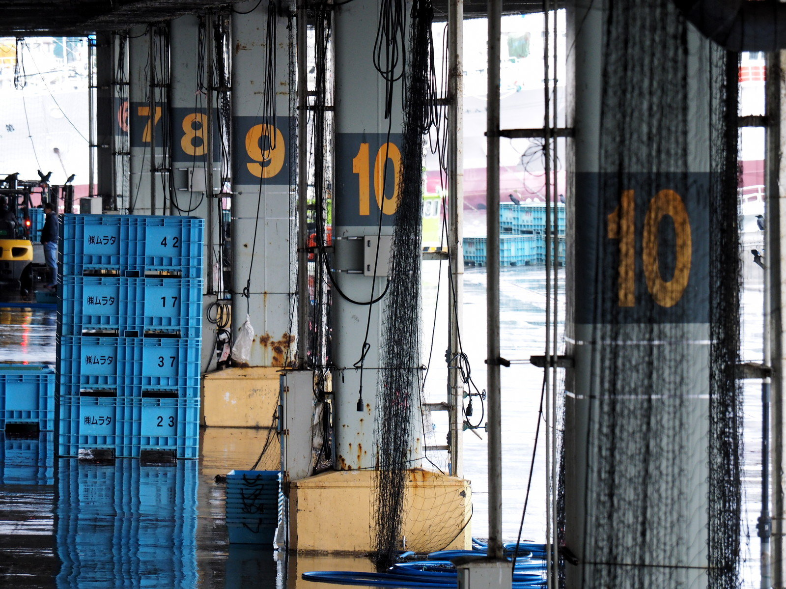 「セリ後の気仙沼漁港に並ぶボウラ」の写真
