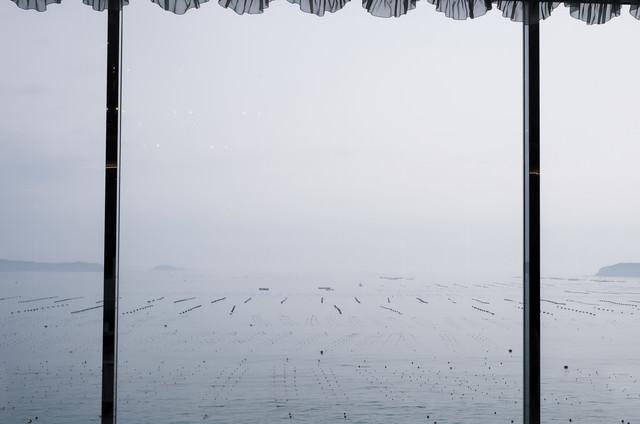 窓越しに見る志津川湾の写真