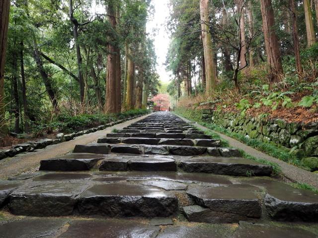 雨に濡れる石畳の写真