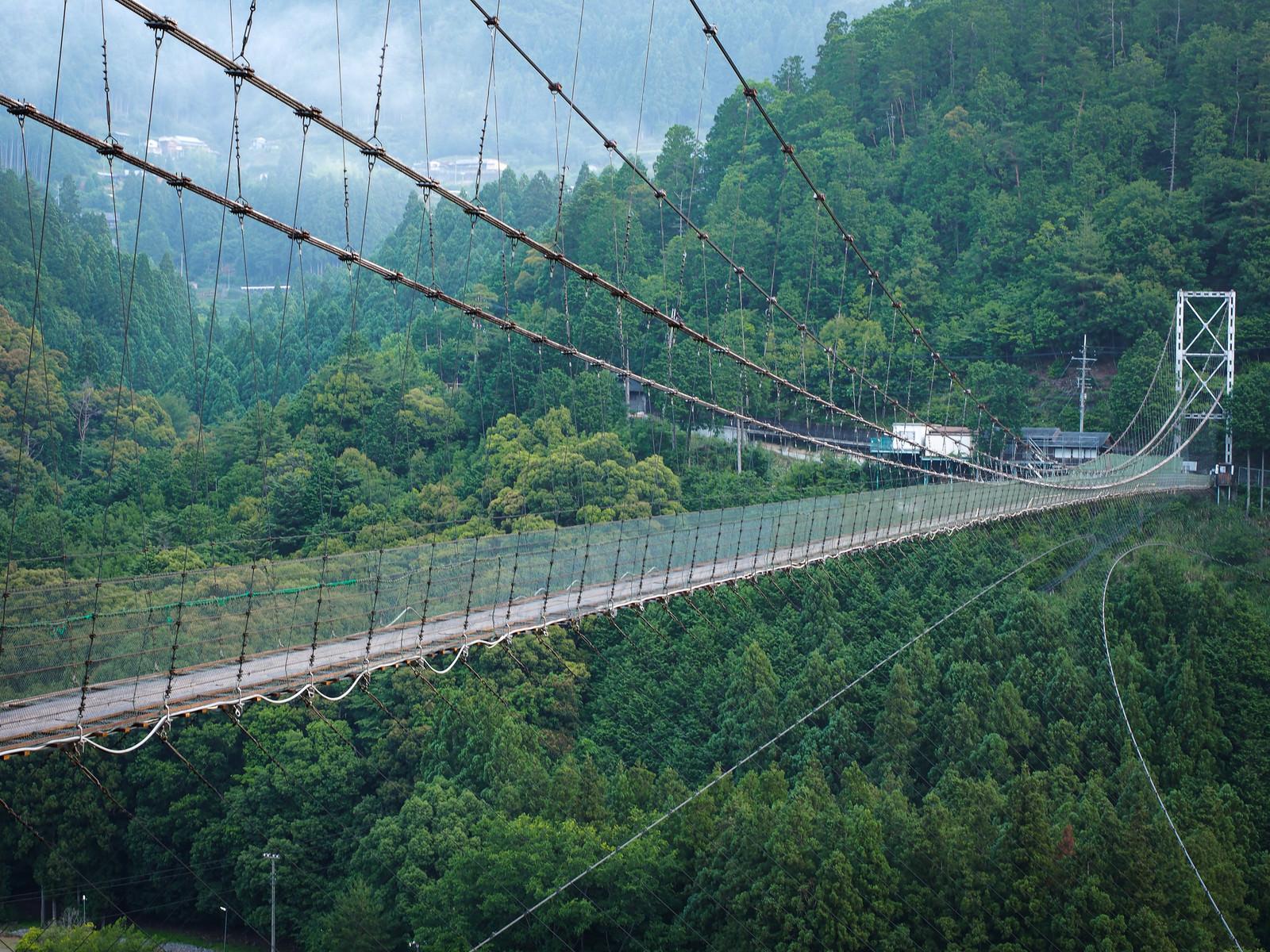 「高所恐怖症には難易度の高い谷瀬の吊り橋」の写真