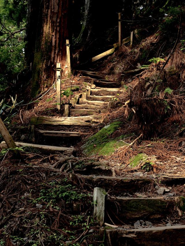 玉置神社境内にある階段の写真