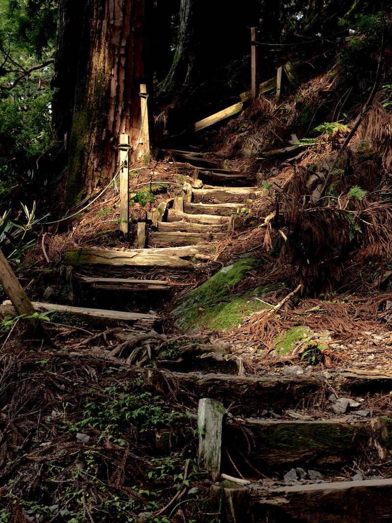 「玉置神社境内にある階段」の写真