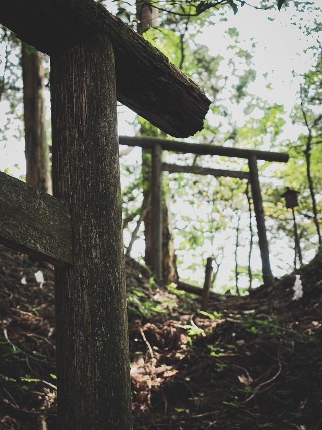 鳥居から続く厳しい修験道(玉置神社)の写真