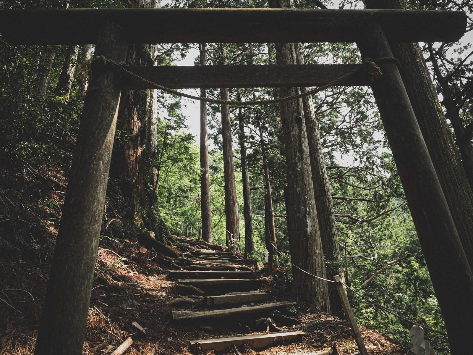 「玉置神社へと続く鳥居と階段」の写真