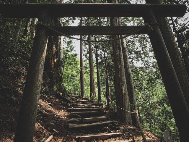 玉置神社へと続く鳥居と階段の写真