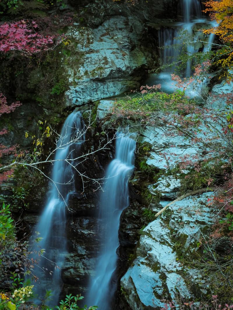 「凛とした雰囲気の安居渓谷(見返りの滝)」の写真
