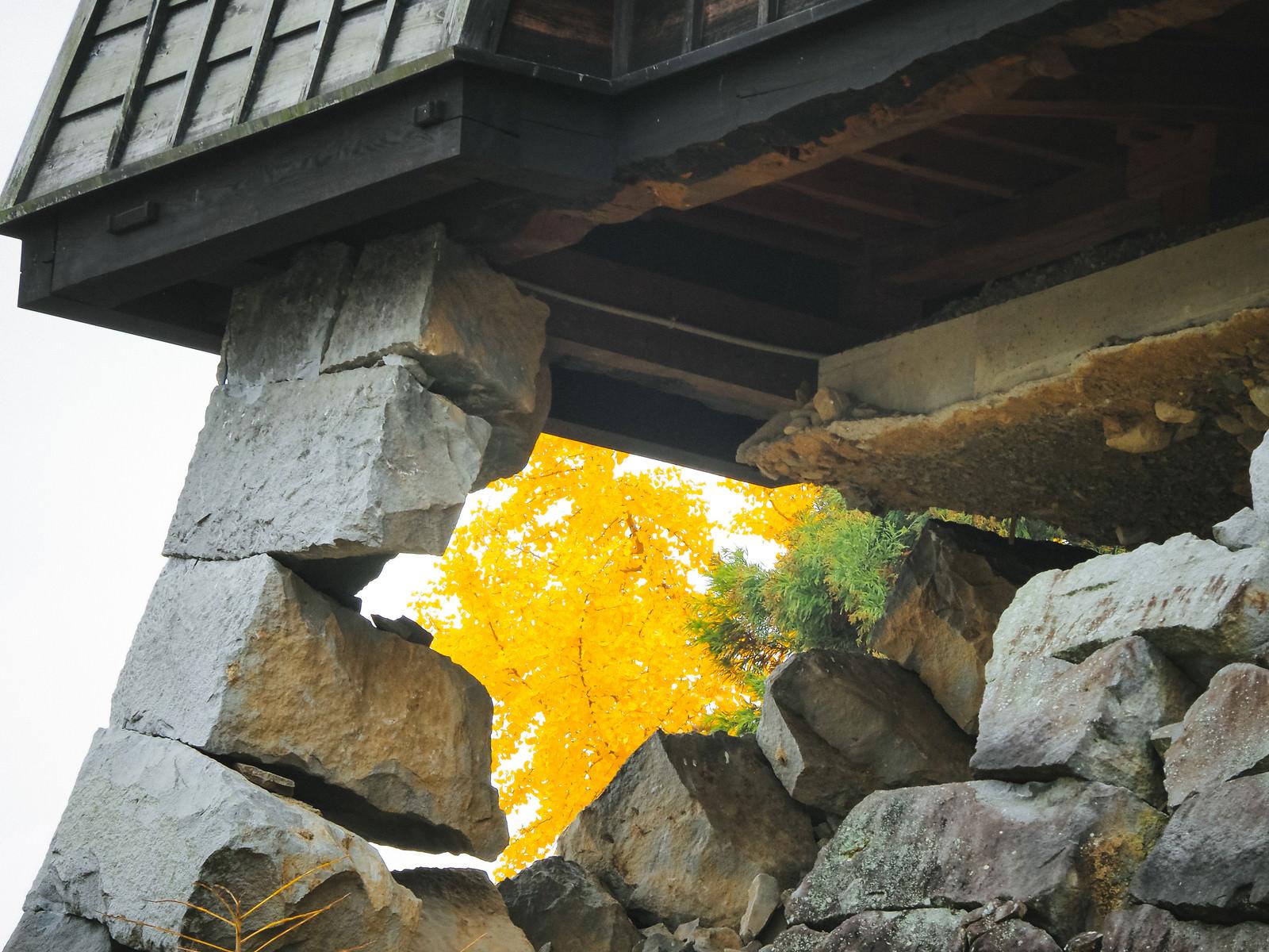 「石垣がギリギリ残る熊本城」の写真