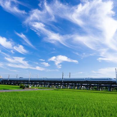 青空を走り抜けるN700系の写真