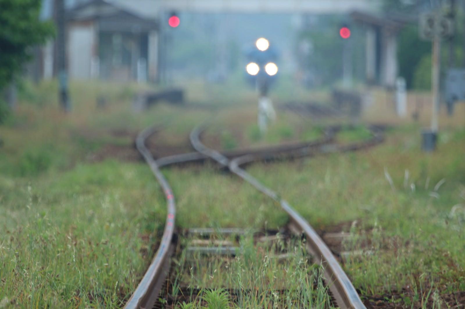 「日に数本しか走行していないローカル線日に数本しか走行していないローカル線」のフリー写真素材を拡大