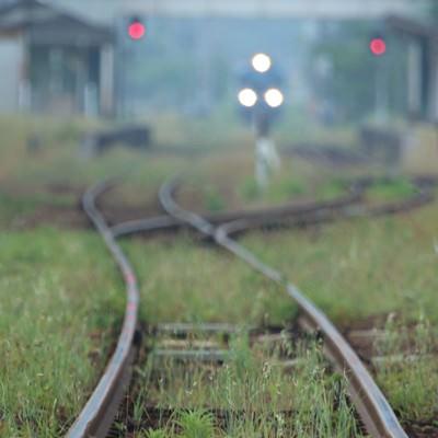 「日に数本しか走行していないローカル線」の写真素材