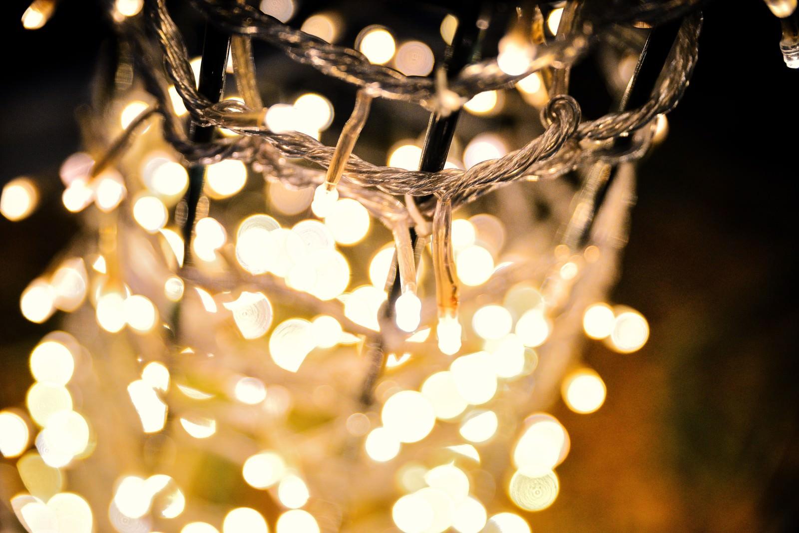 「電飾のライトアップ」の写真