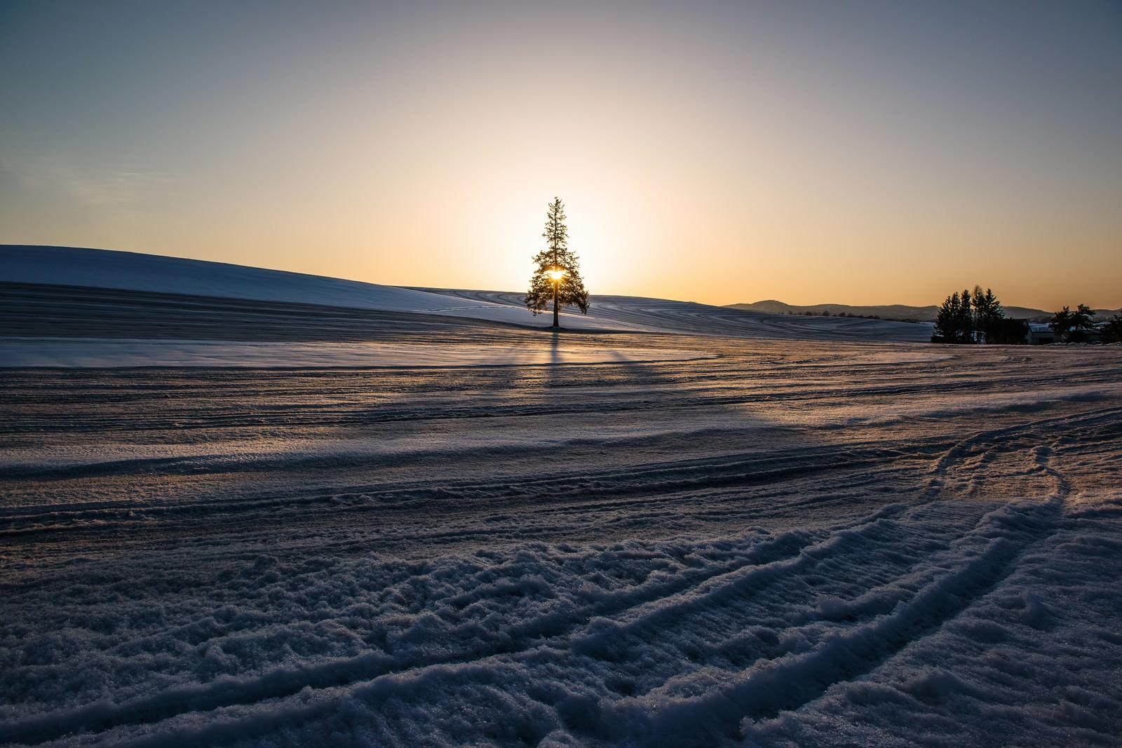 「雪の美瑛雪の美瑛」のフリー写真素材を拡大