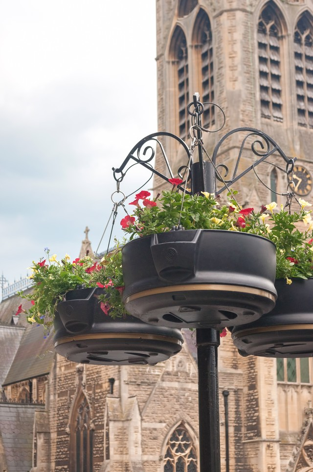 バースの街にある鉢花の写真