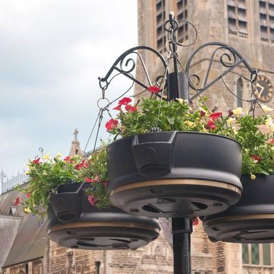 「バースの街にある鉢花」の写真素材