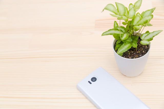 植物と携帯電話の写真