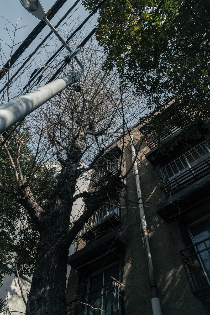 「同潤会アパート」の写真