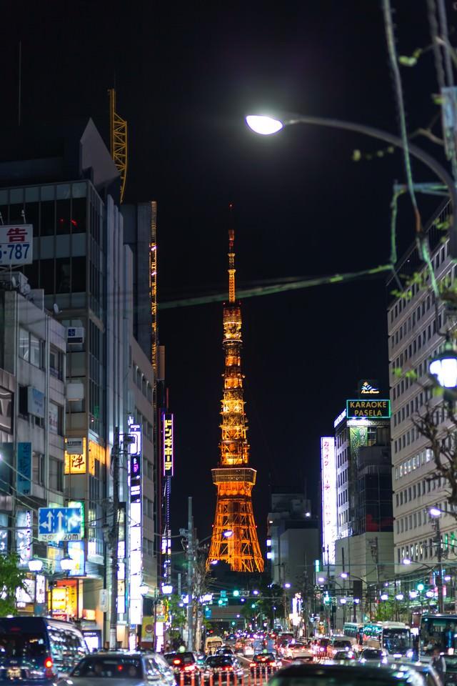 六本木からの東京タワー(夜間)の写真