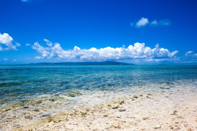 南国の透き通る海の写真