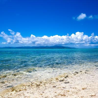 「南国の透き通る海」の写真素材