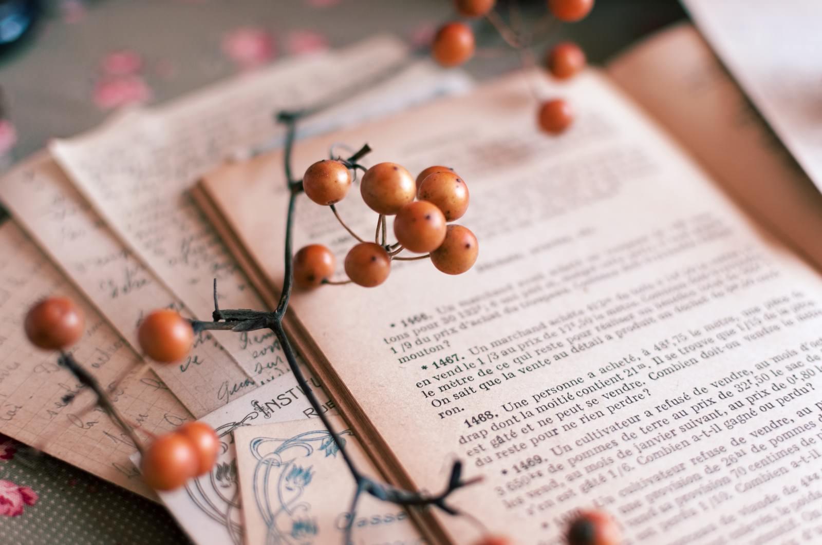 「洋書とサンキライ洋書とサンキライ」のフリー写真素材を拡大