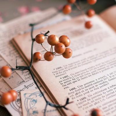 「洋書とサンキライ」の写真素材