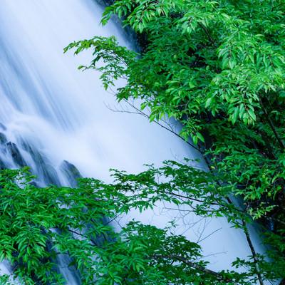 滝の流れと癒やしの写真