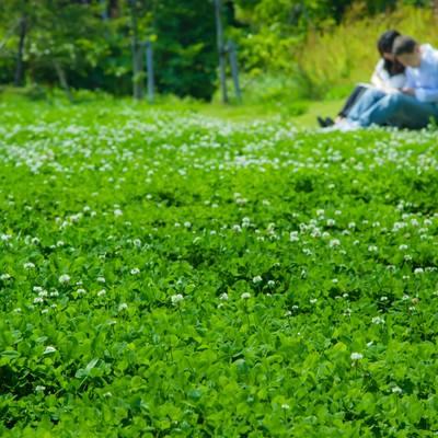 「緑の中で座る恋人」の写真素材