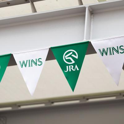 JRAのWINSの旗の写真