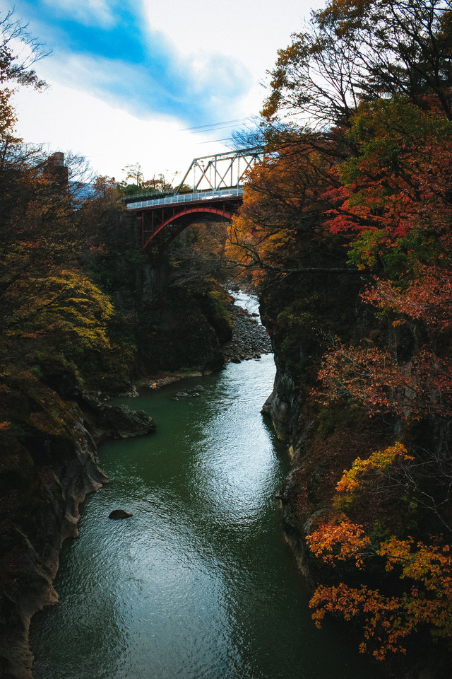 吾妻渓谷の紅葉と鉄橋の写真