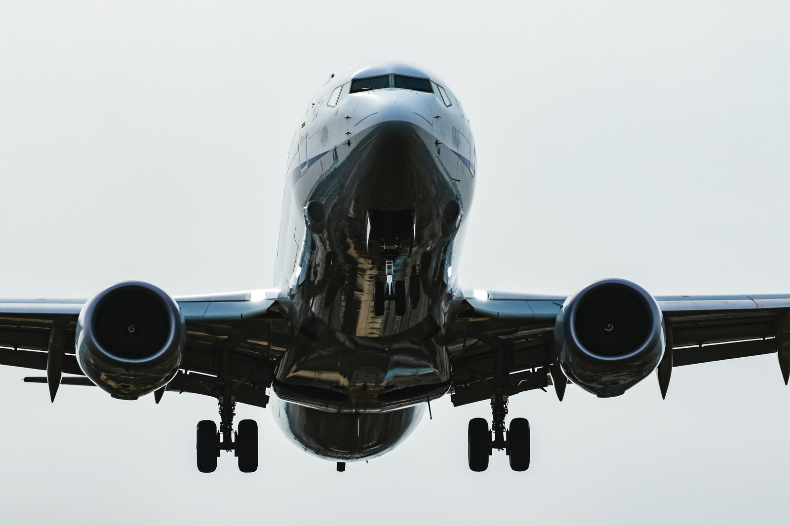 「大空の翼」の写真