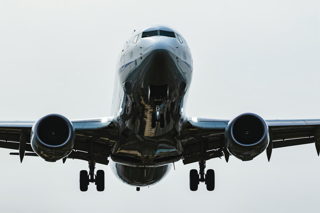 大空の翼の写真