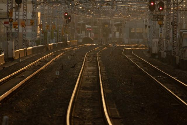 西九条駅方面を望む(夕刻)の写真