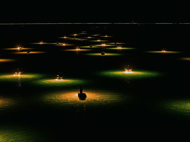 吉野川シラスウナギ漁(夜間)の写真