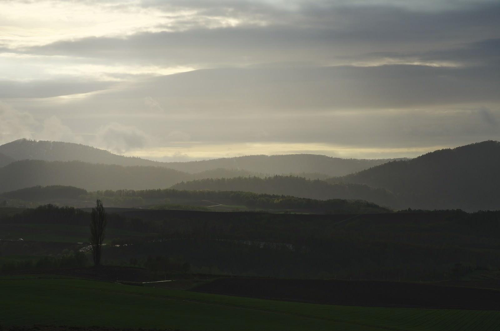 「朝靄の大地」の写真