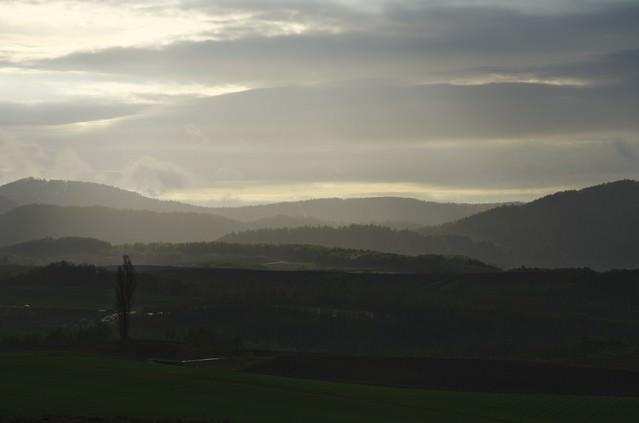 朝靄の大地の写真