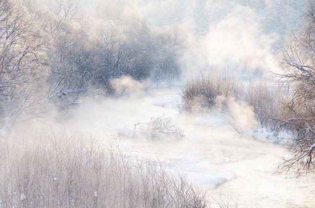 川霧の写真