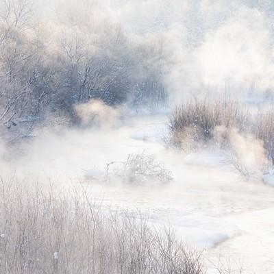「川霧」の写真素材